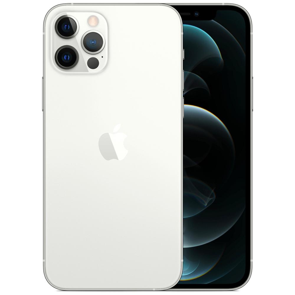 Apple 아이폰 12 Pro 자급제, 256GB, 실버