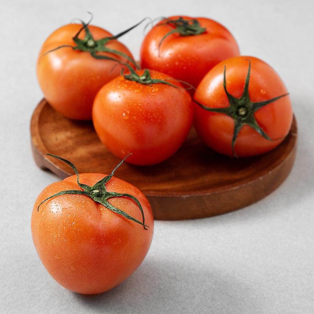 GAP 인증 완숙 토마토, 1kg, 1개