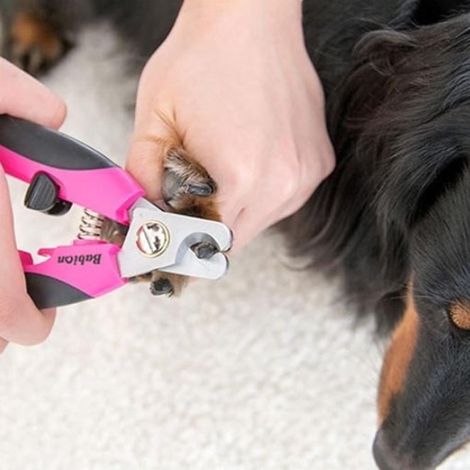 바비온 반려동물 발톱깍기 대형 013R, 핑크+블랙, 1개