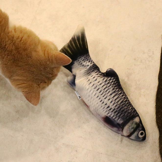 리스펫 움직이는 생선 파닥파닥 고양이 장난감, 청어, 1개