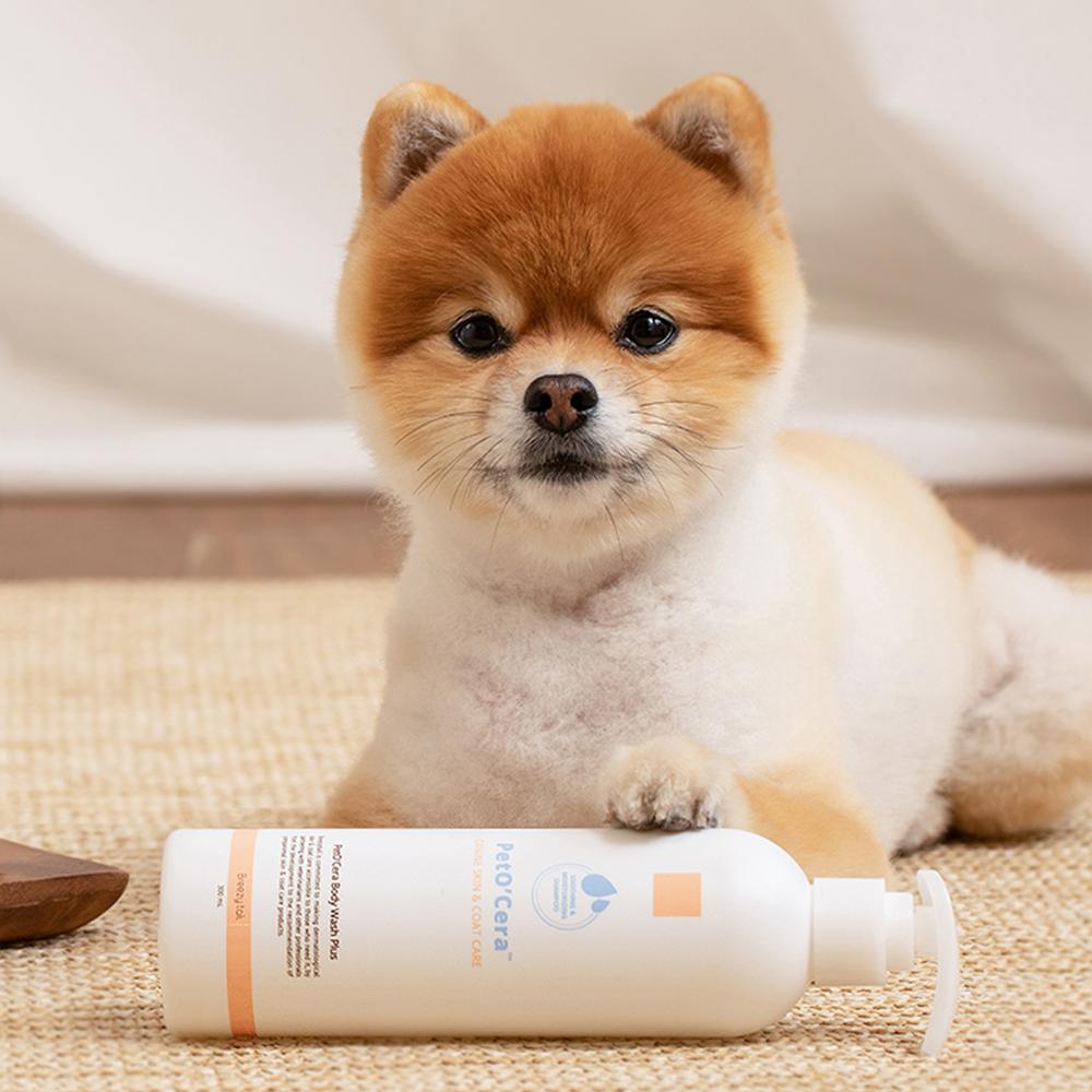 [브리지테일] 브리지테일 페토세라 바디워시 플러스 강아지 샴푸, 300ml, 1개 - 랭킹1위 (22400원)