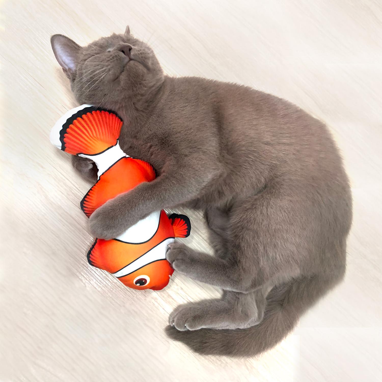 펫케어 춤추는생선 고양이 장난감 크라운피쉬 니모, PG-CT014, 혼합색상