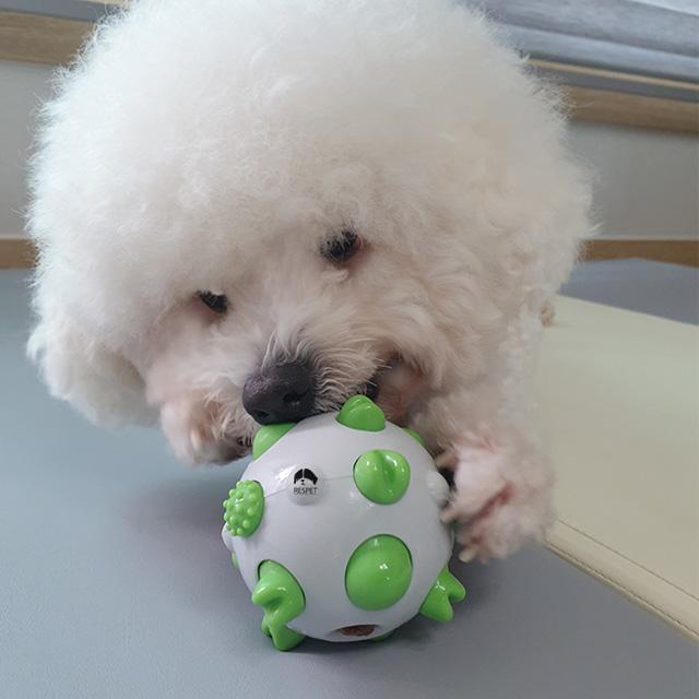 리스펫 강아지 치카치카 플레이볼 노즈워크 장난감, 그린, 1개
