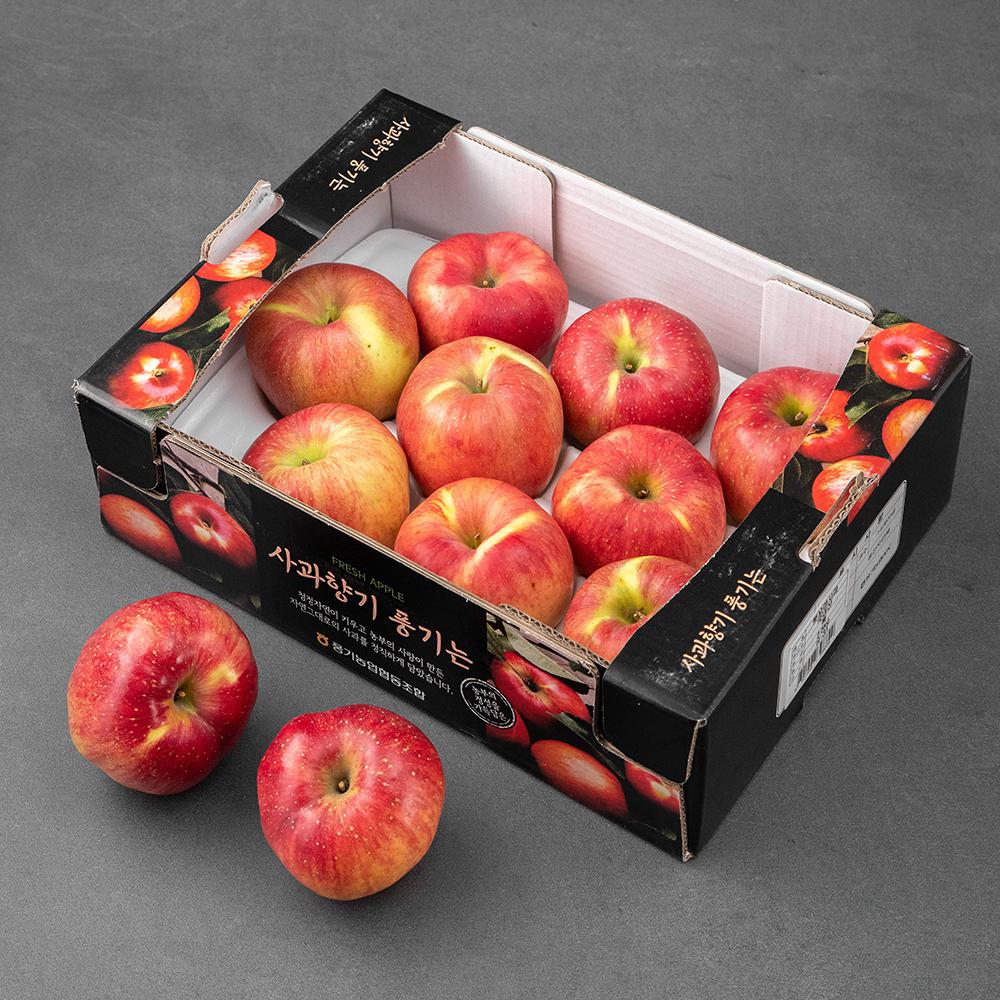 풍기농협 당도선별 햇꼬마사과, 2.5kg (9~14입), 1박스