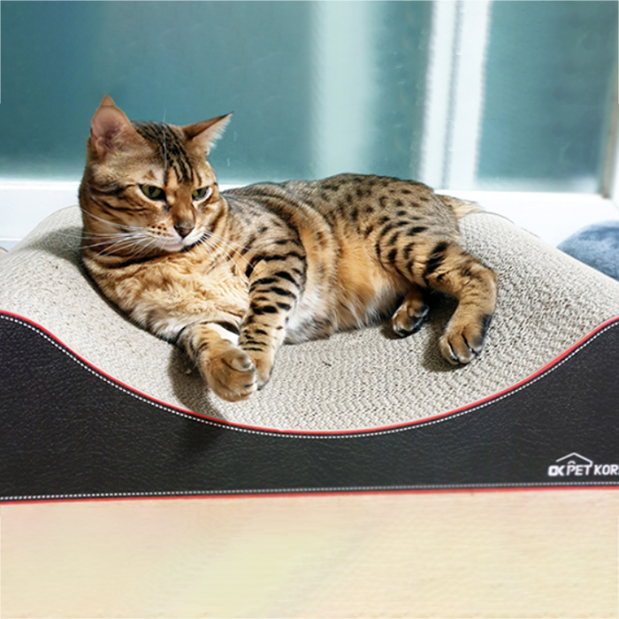 오케이펫코리아 다슬이 고양이 바디필로우 스크래쳐 650 x 350 x 140 mm, 혼합색상, 1개