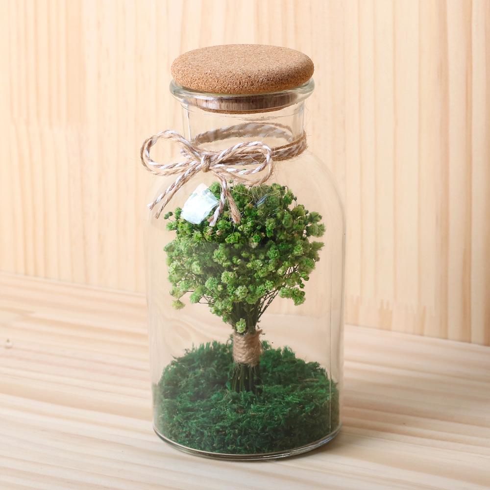 로맨틱노벰버 안개꽃 드라이플라워 투명 보틀 500ml, 라이트그린