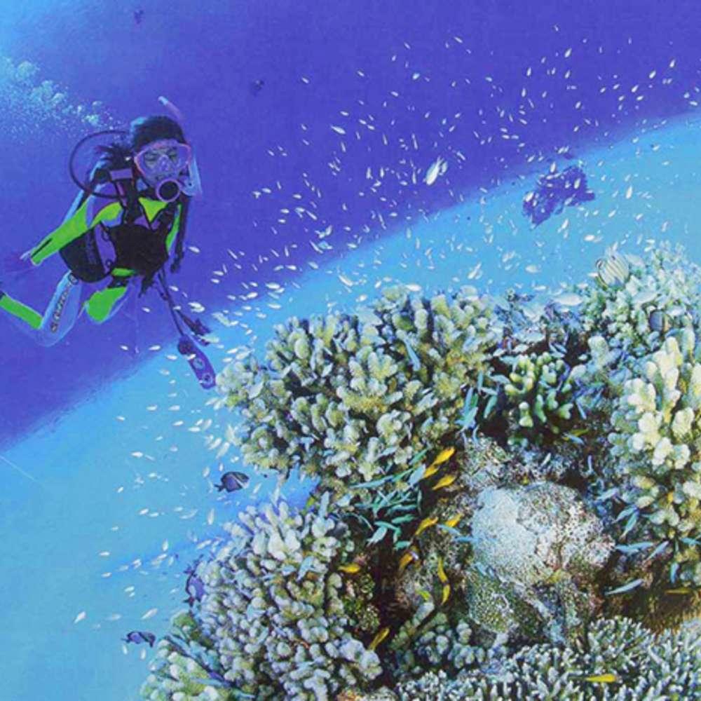 [괌] 체험 다이빙 (왕복픽업 포함)