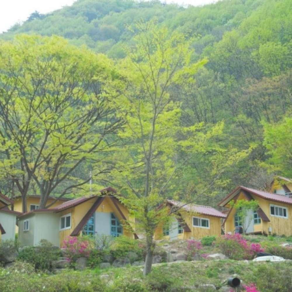 [완주군] 예원캠핑장