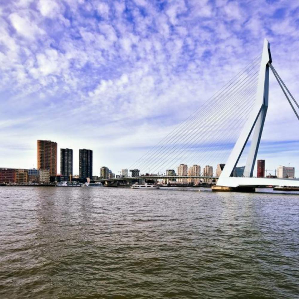 [네덜란드] |암스테르담| 그랜드 홀랜드 일일 투어: 로테르담, 델프트, 헤이그, 마두로담 미니아투