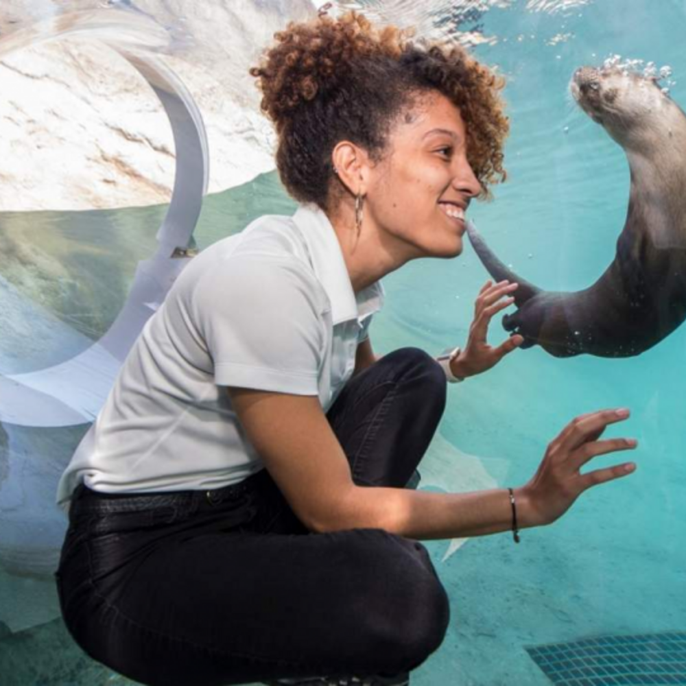 [미국] |마이애미| 마이애미 동물원 입장권 일반