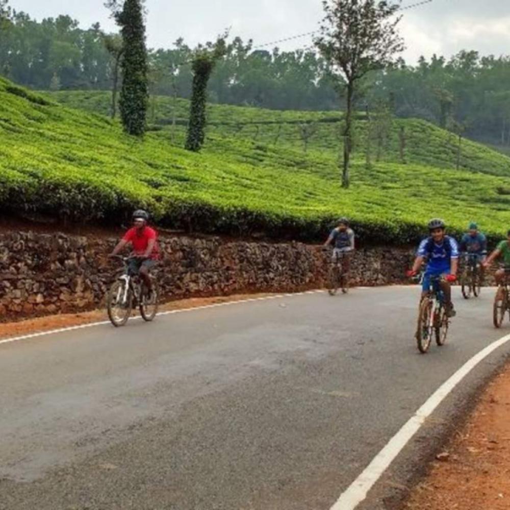 [인도] |쿠르그| 이루푸 폭포 & 쿠르그 티 에스테이트 사이클링 투어 입장권