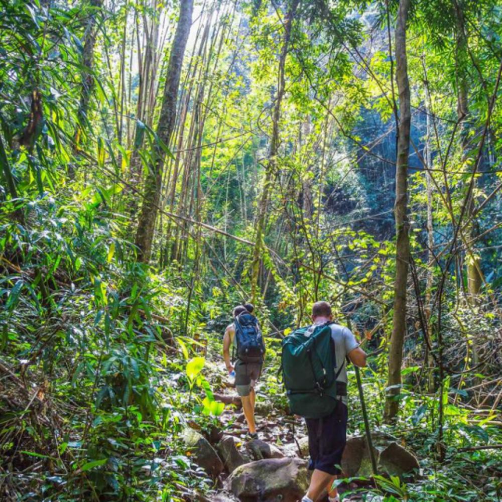[태국] |핫야이&꼬리뻬| 꼬리뻬 정글 트레킹 & 스노클링 투어 by 롱테일 보트 입장권