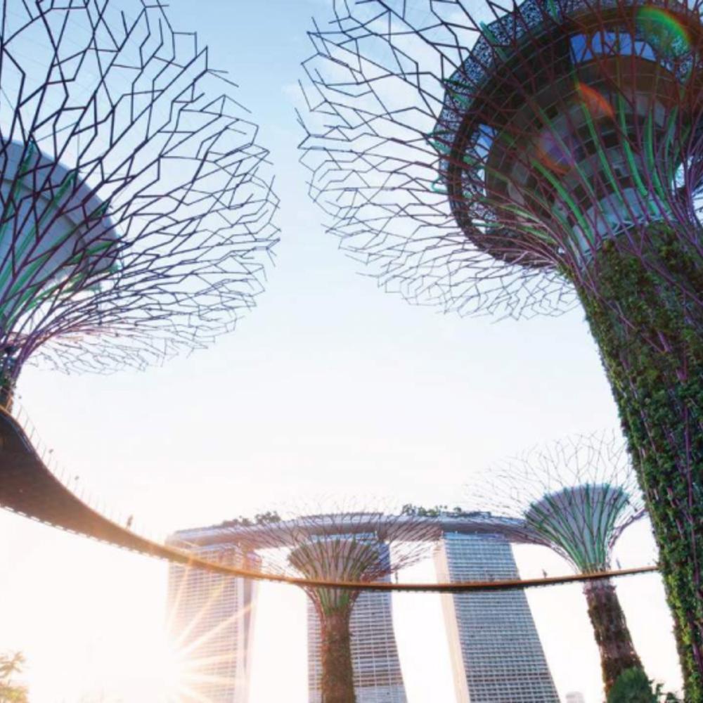 [싱가포르]  싱가포르  올데이 패스 2일권