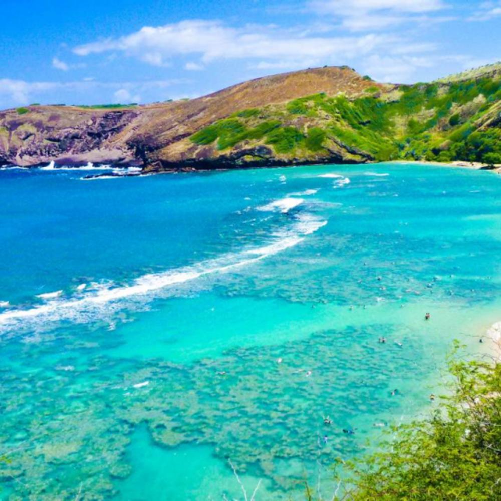 [미국] |하와이| 오아후 GO 카드 - 올 인클루시브 패스 1일권