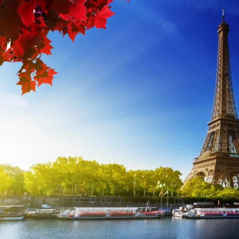 [영국] |런던| 파리 투어 + 샴페인 런치 유로스타 왕복 티켓  크루즈  (스탠다드 클래스)