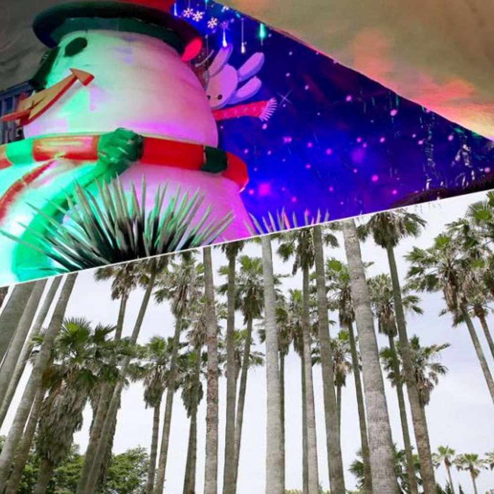 [제주도] |제주도| 아이스뮤지엄3D착시아트+5D영상+한림공원 입장권