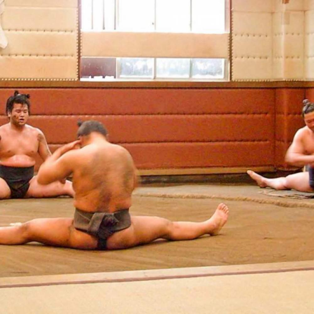 [일본] |도쿄| 도쿄 스모 훈련 참관 1인