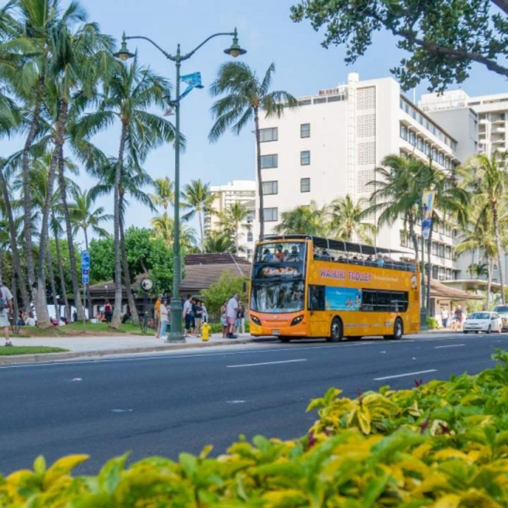 [미국] |하와이| 하와이 와이키키 트롤리 패스 1일  (초록색 및 분홍색 노선)
