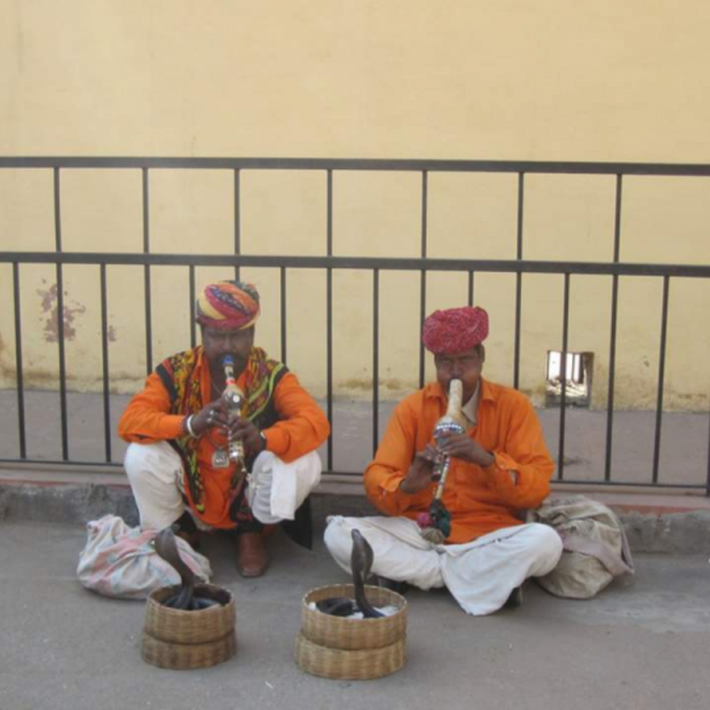 [인도] |자이푸르| 자이푸르 오전 워킹 투어 입장권