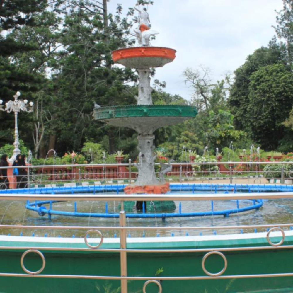 [인도] |방갈로르| 랄박 식물원 워킹 투어 프라이빗  (5-9인)