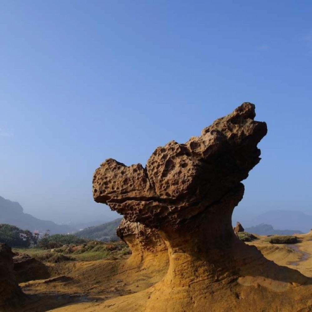 [대만] |타이페이| 예류지질공원 입장권 입장권