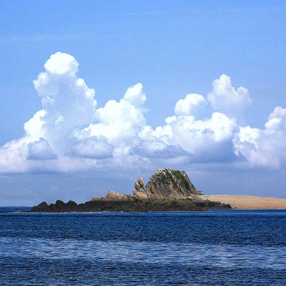 [충남] 5/30 출발확정 청양 힐링시티투어 바다 장곡사 보령 국내 당일 힐링 풍경여행