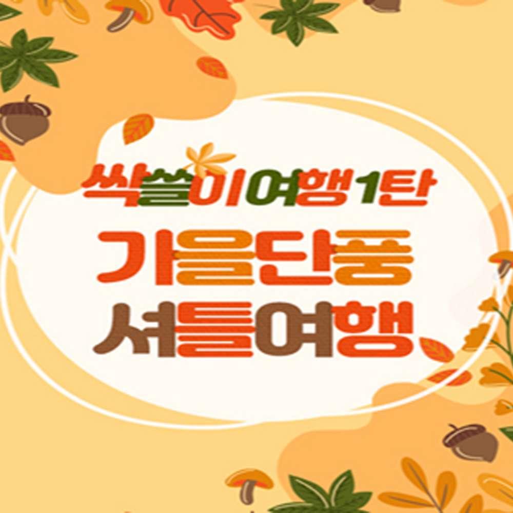 [강원] 가을단풍 셔틀 선택여행/설악산/소금강/내장산/주왕산/당일/셔틀