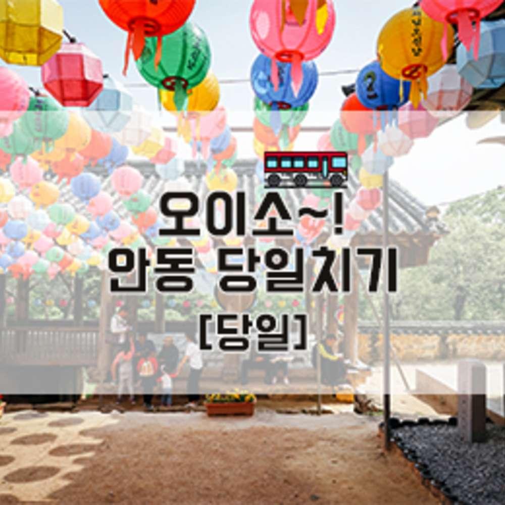 [경상북도/버스] 오이소~ ! 안동 당일치기 [당일]