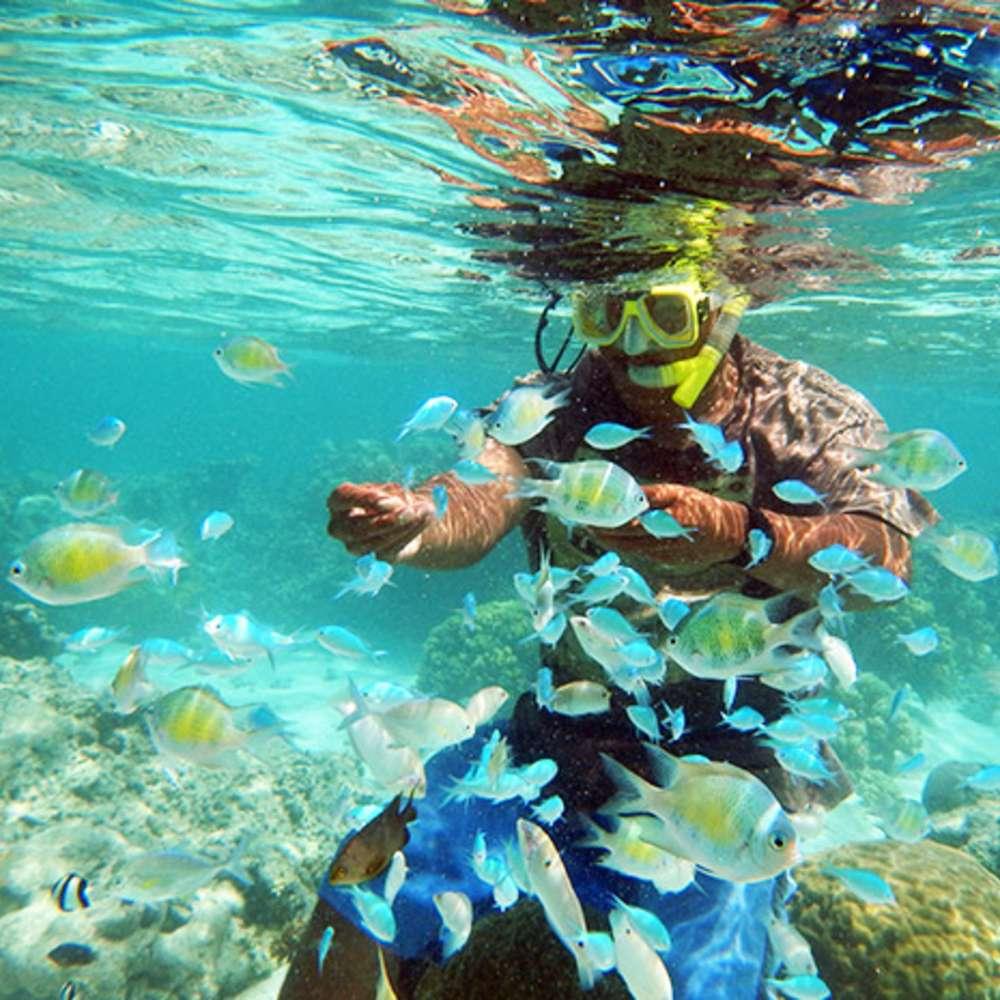 [괌] 해양스포츠 총 집합! (픽업포함★아동무료)