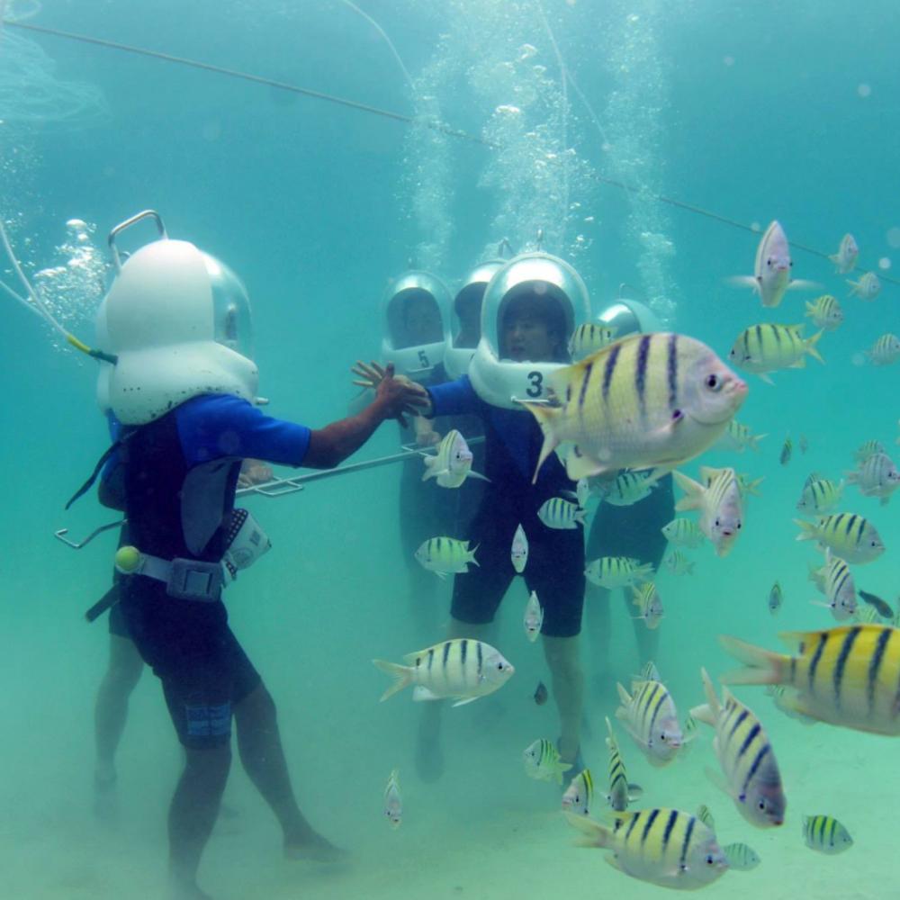 [하와이] 하와이 카네오해베이에서 즐기는 해양스포츠패키지