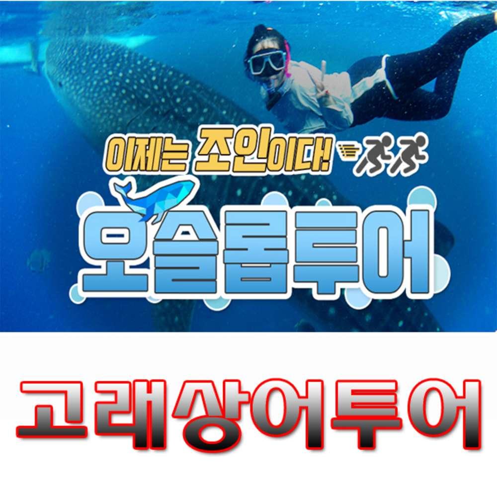 [세부막탄] 세부막탄 오슬롭 고래상어조인투어-사비포터여행서비스