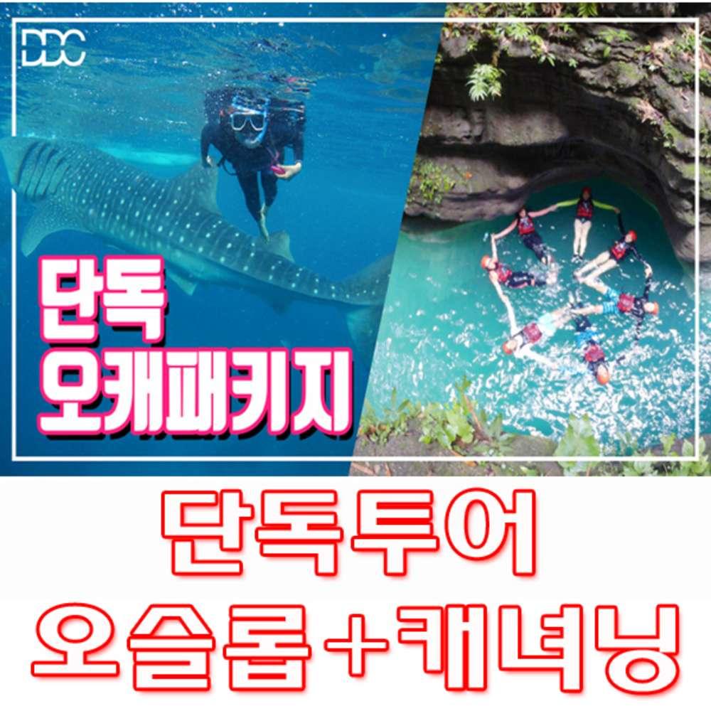 [세부막탄] 세부막탄 오슬롭 고래상어투어 + 가와산 캐녀닝투어 단독패키지 - 사비포터여행서비스