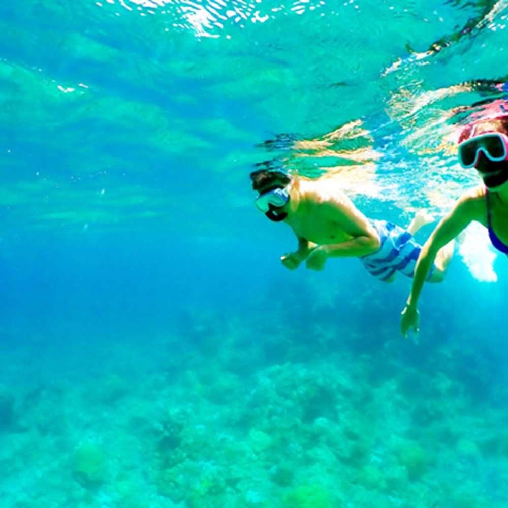 [괌] 알루팡비치클럽 돌핀크루즈 & 해양스포츠 (라면제공프로모션)