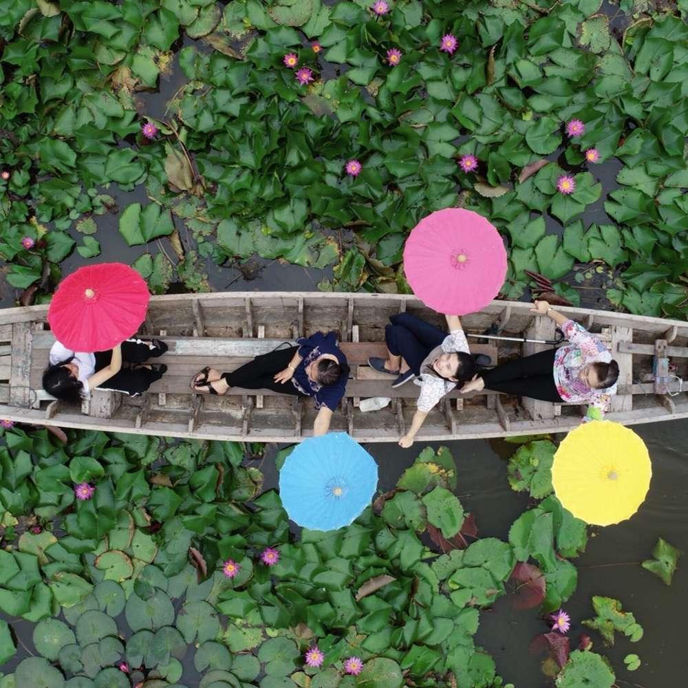 [방콕] 연꽃 정원 + 아유타야 투어