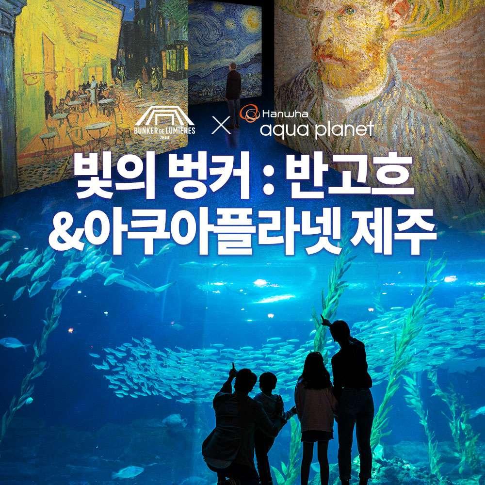 [제주] 빛의벙커:반고흐+아쿠아플라넷 제주PKG