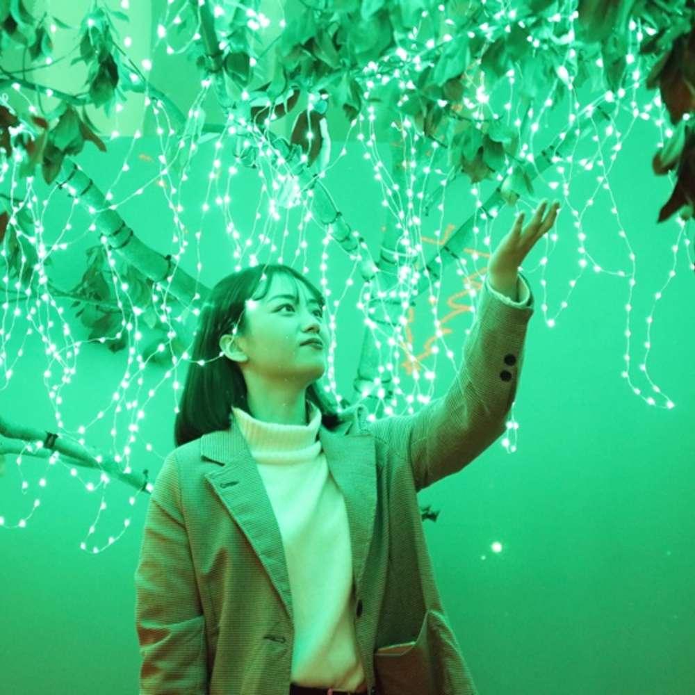 [제주] 수목원테마파크+세리월드 승마기본 / 아이스뮤지엄