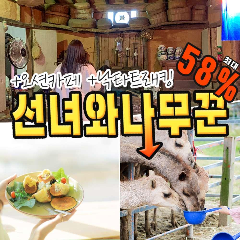 [제주] ★반짝할인★ 선녀와나무꾼+오션카페+낙타트래킹