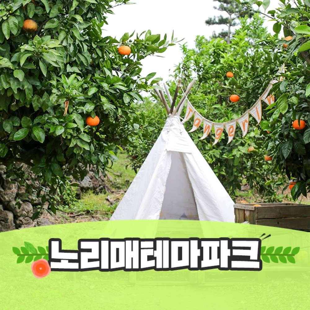 [제주] 노리매 테마파크