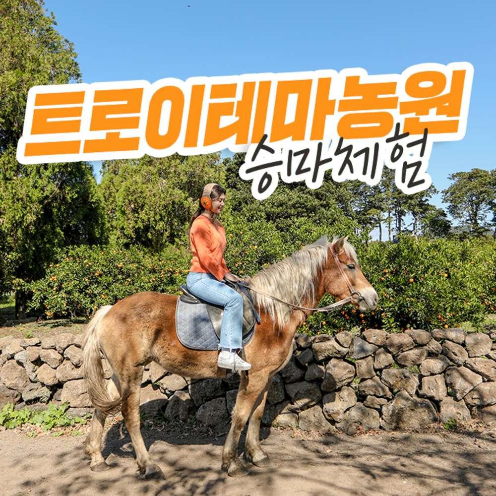 [제주] 트로이테마농원 승마체험