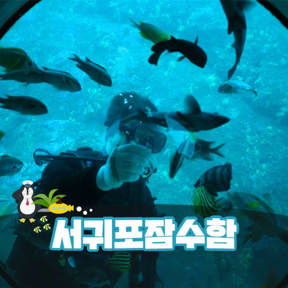 [제주] 서귀포잠수함