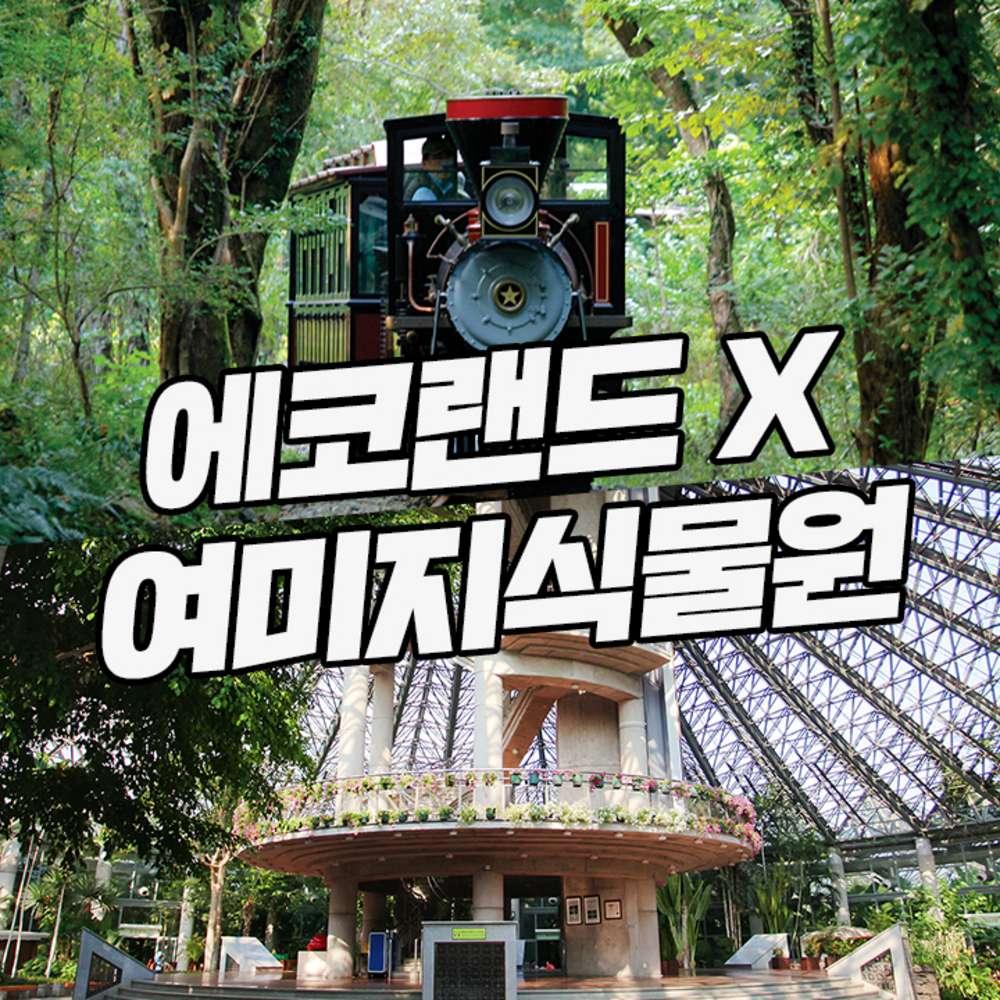 [제주] 에코랜드+여미지식물원