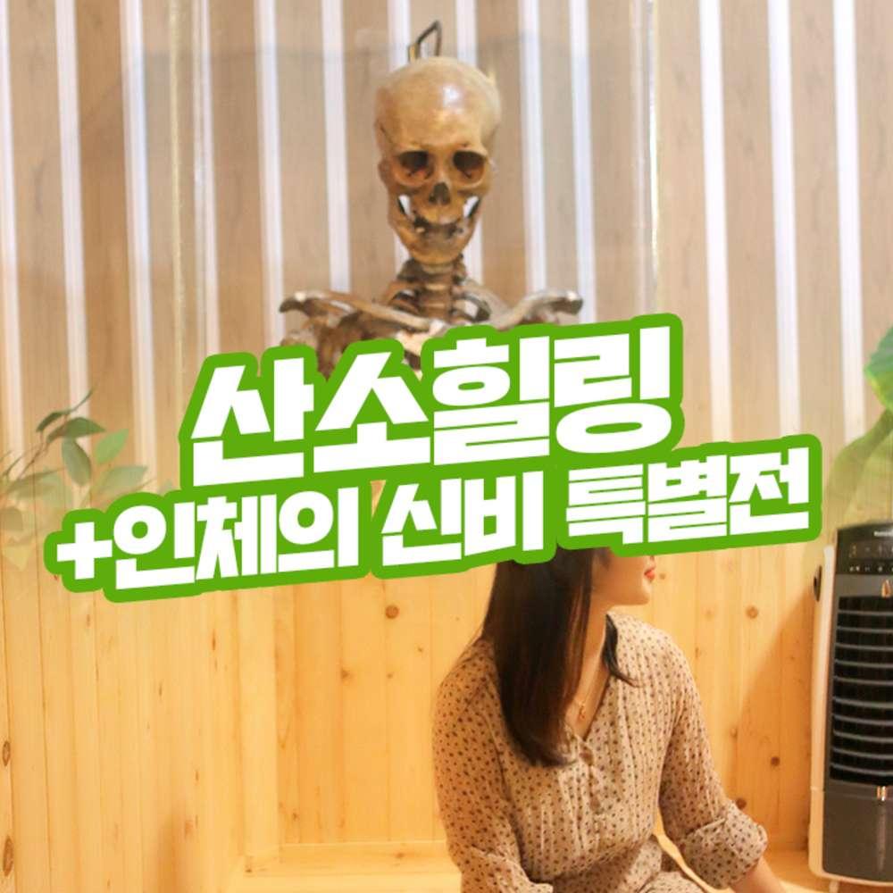 [제주] 산소힐링피아&인체의신비