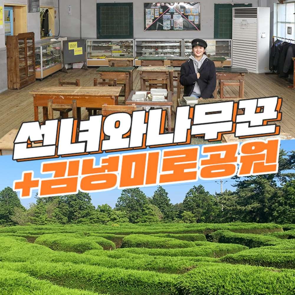 [제주] 선녀와나무꾼+김녕미로공원