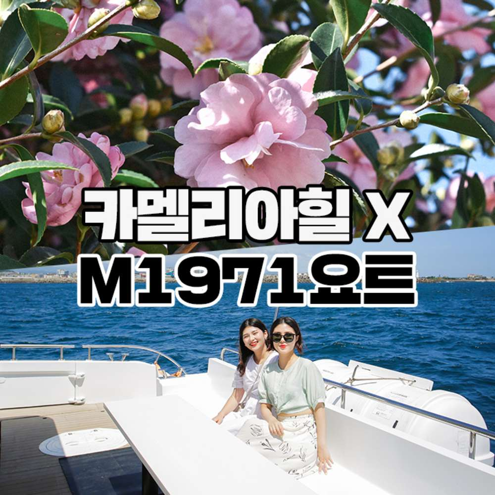 [제주] M1971요트+카멜리아힐