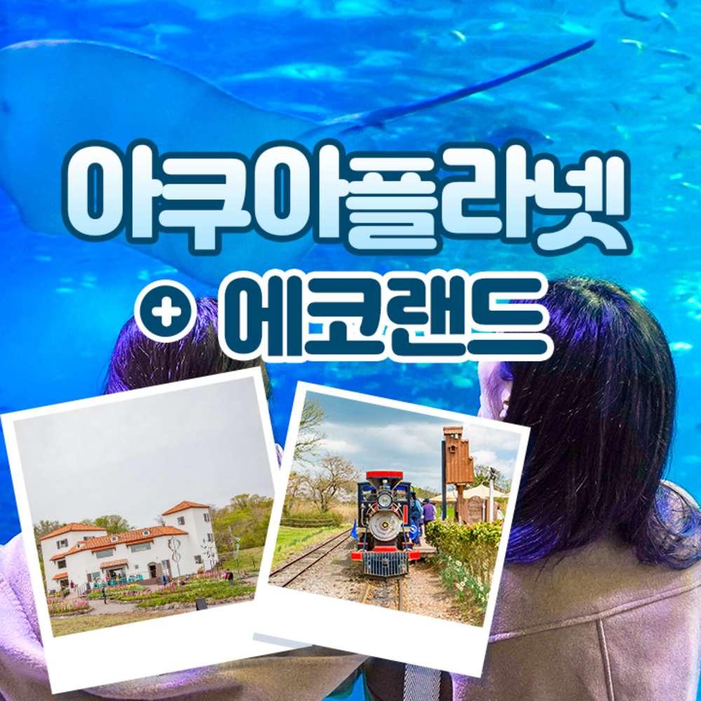 [제주] 아쿠아플라넷+에코랜드