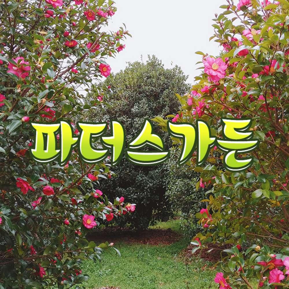 [제주] 파더스가든(입장+동백꽃축제+동물농장 체험)