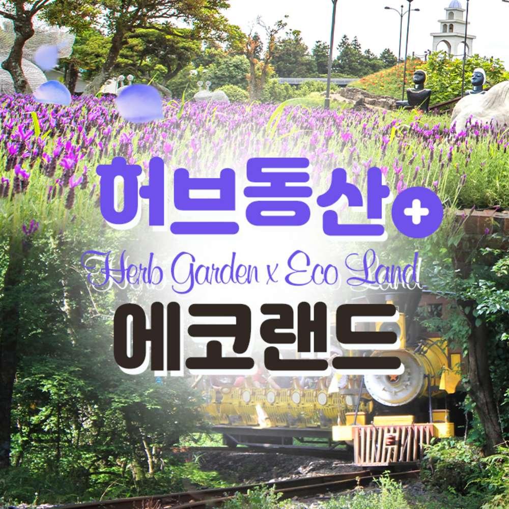 [제주] 에코랜드+허브동산