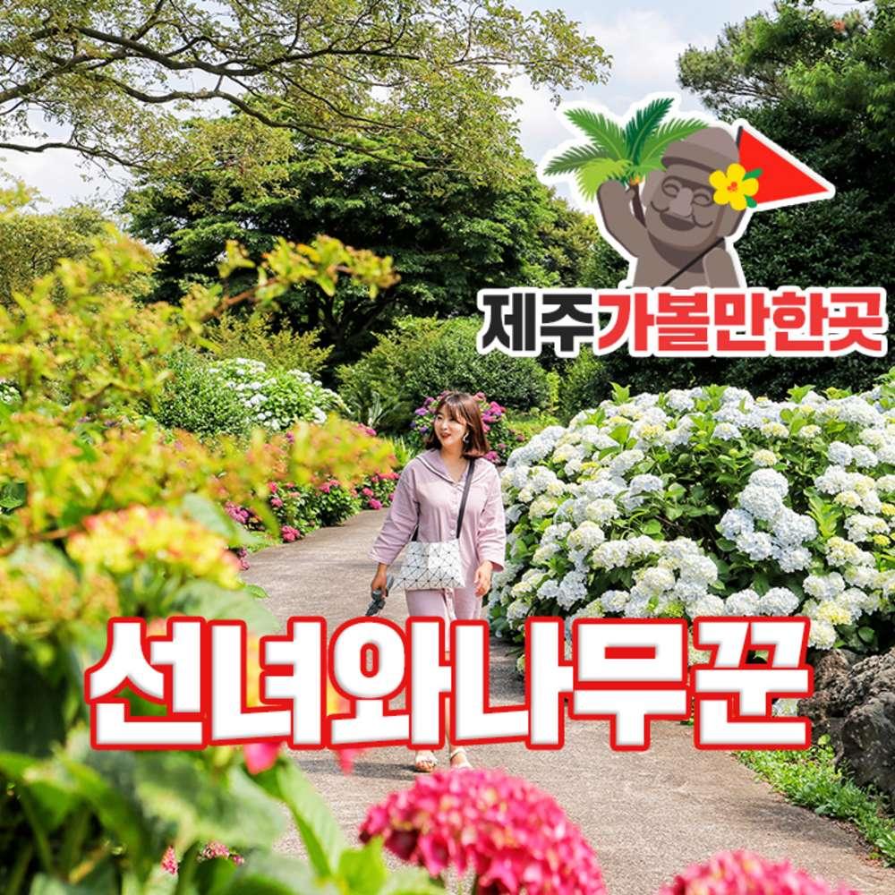 [제주] 선녀와나무꾼+제주가볼만한곳