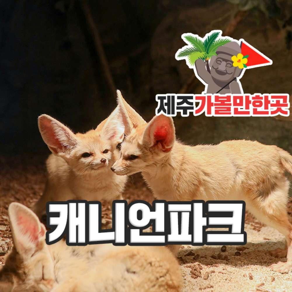 [제주] 캐니언파크 제주+제주가볼만한곳