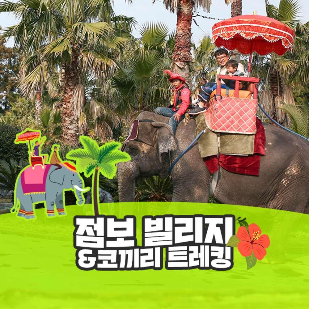 [제주] 점보빌리지+코끼리트레킹